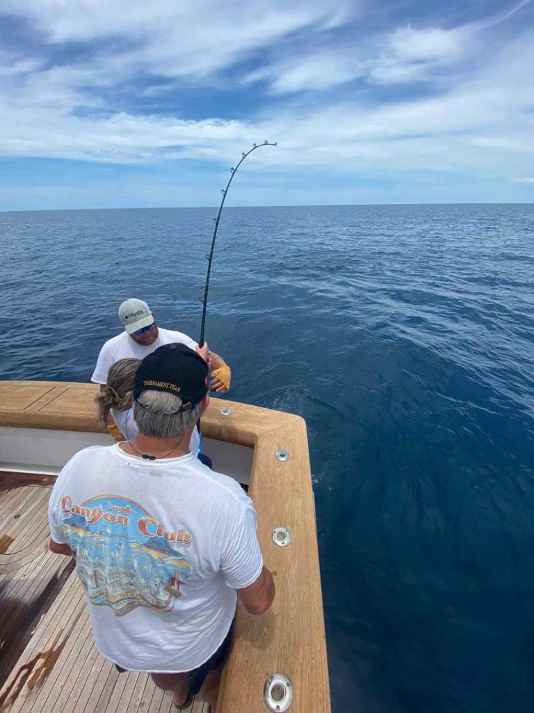 mahi mahi charter-fishing-stuart-fl