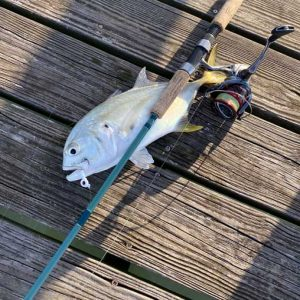 inshore-fishing-rod